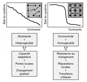 Critère de résilience : la modularité