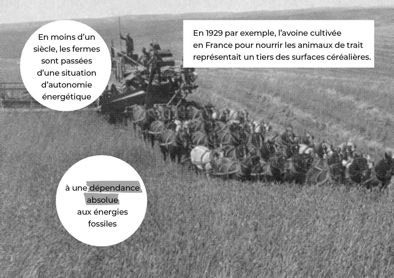 LGA_Résilience-alimentaire_68