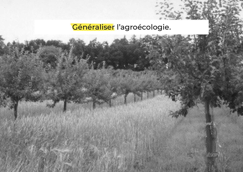 LGA_Résilience-alimentaire_79